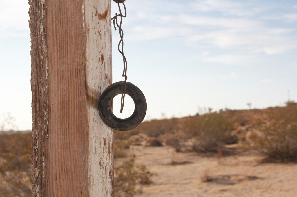 Desert by Amy